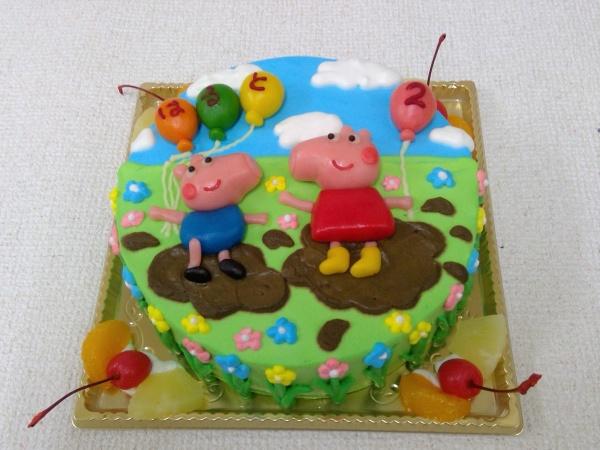 pig(2)